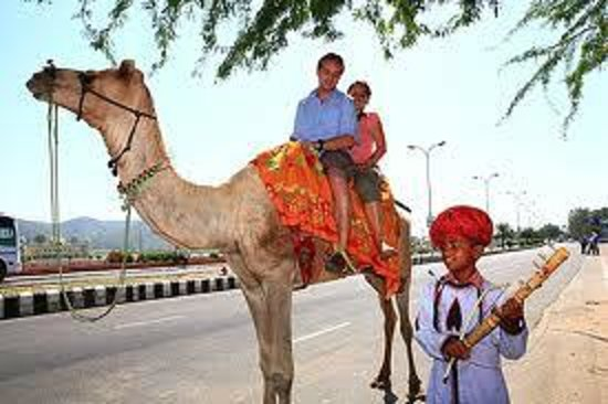 Jaipur Tourist Driver India