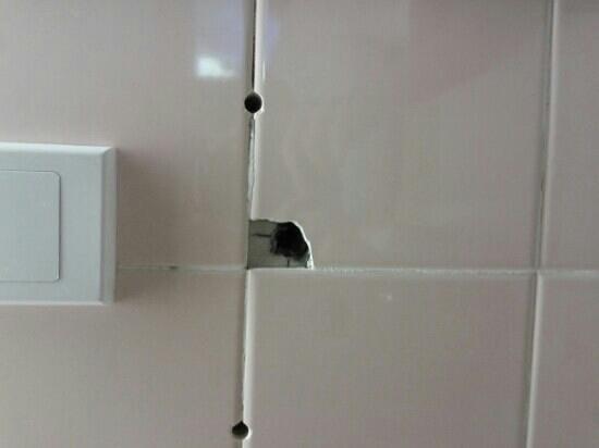 Auckland Rose Park Hotel: mattonelle rotte nel bagno
