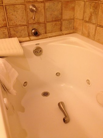 Stanford Terrace Inn:                   The SECOND spout to fall off during our stay.