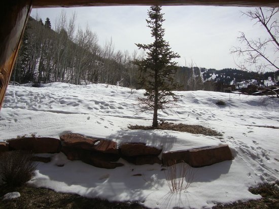 Lodges at Deer Valley:                   view from 5107