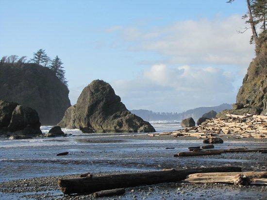 Ruby Beach: Ruby's beach - north