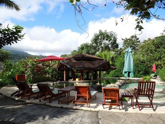Hotel Mountain Paradise:                                     Hot pool & pool bar.