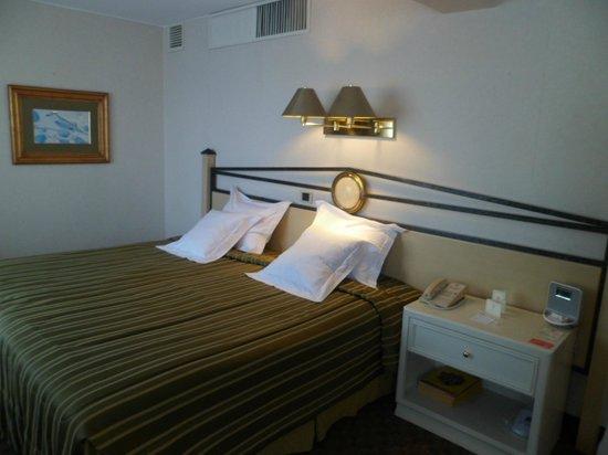Suites Del Bosque Hotel: Al entrgarnos la habitación, la cama parece una king size