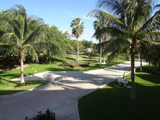 Heaven at the Hard Rock Hotel Riviera Maya:                                     The grounds out front.