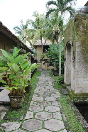 Wapa di Ume Resort and Spa:                   Pathway to pool