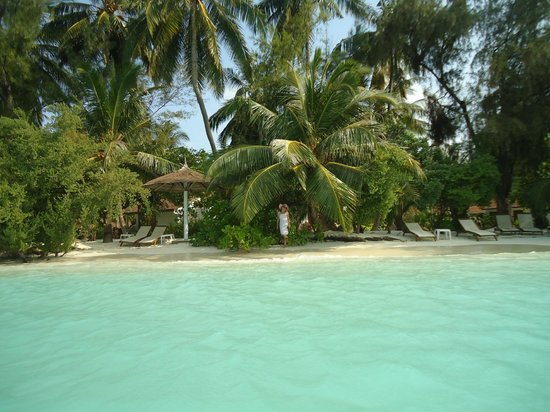 Kurumba Maldives:                   Plaj deluxe oad önü