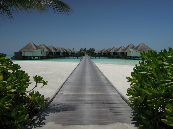 Four Seasons Resort Maldives at Kuda Huraa:                   桟橋