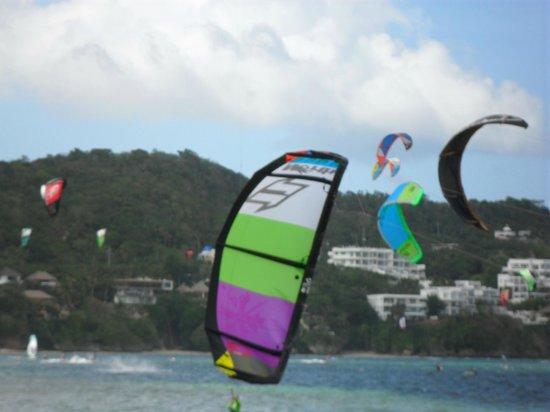 Blue Bayou Bungalows:                   Kites ahoy!