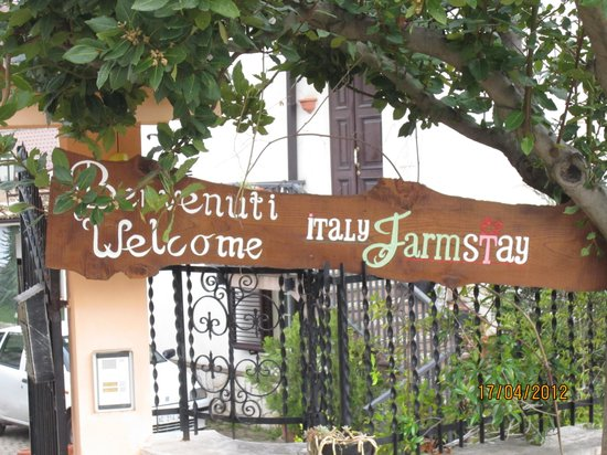 Italy Farm Stay:                   Italian Farmstay