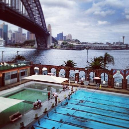 Olympic Pool North Sydney:                   lunch time dip