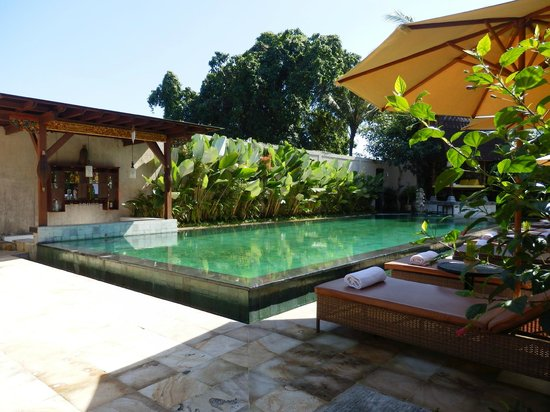 Sri Phala Resort & Villa: The hotel pool with surrounding foilage