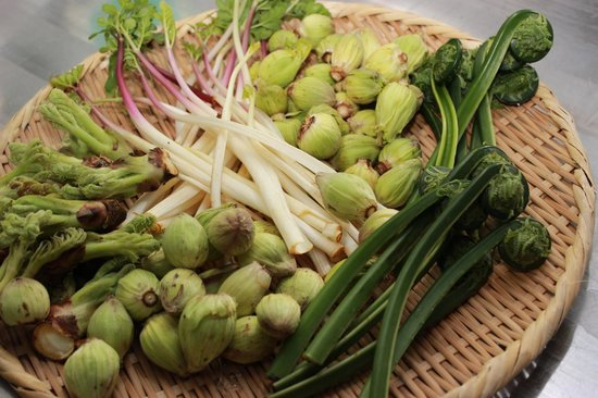 Tsukiokaonsen Masyuu: 季節を感じる事の出来る食材