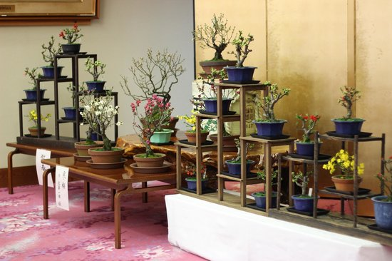 Tsukiokaonsen Masyuu: 館内を彩る生花も魅力
