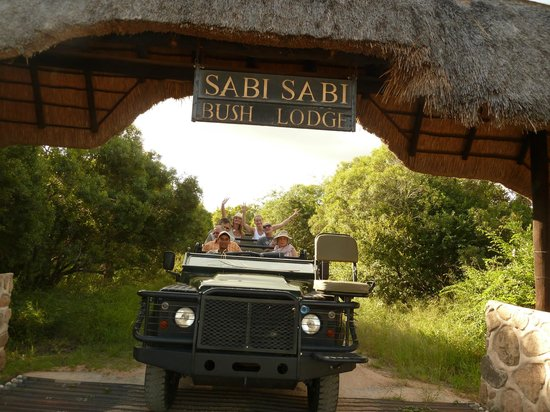 Sabi Sabi Bush Lodge: Safari!
