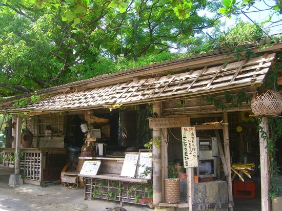 今帰仁城跡2 - Picture of Nakijin Castle Remains, Nakijin-son - TripAdvisor