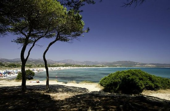 Spiaggia di sant 39 anna budoni foto di residence mare e for Alloggi budoni