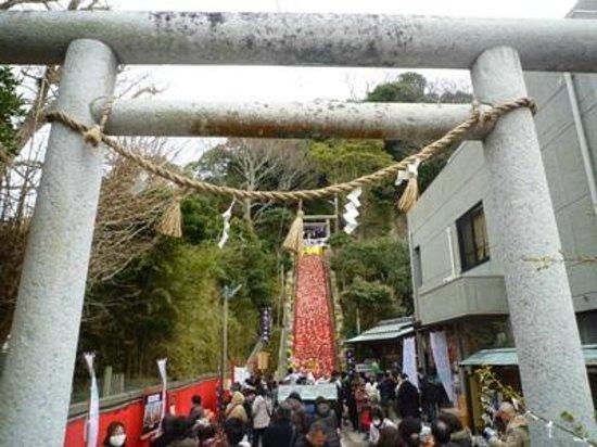 Tomisaki Shrine:                   遠見岬神社01