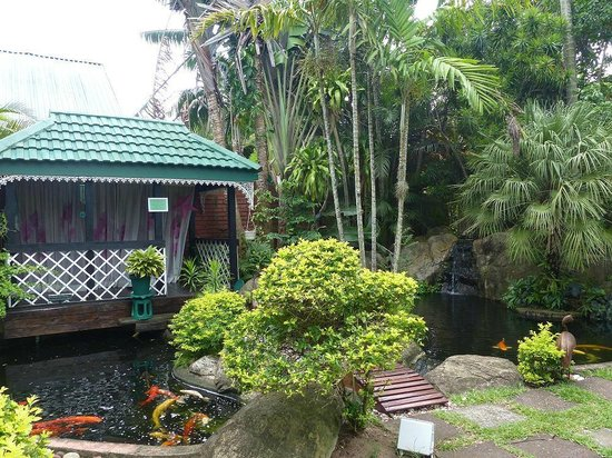 Avalone Guest House:                                     Garden