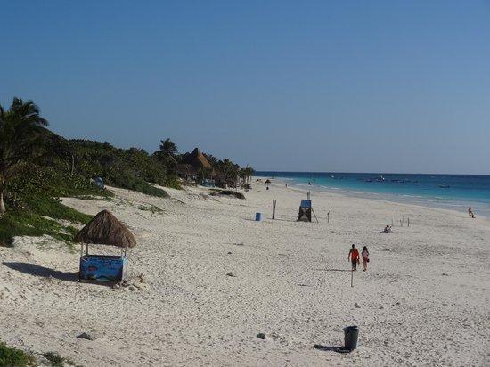 El Paraiso Tulum:                                     Vue de la plage