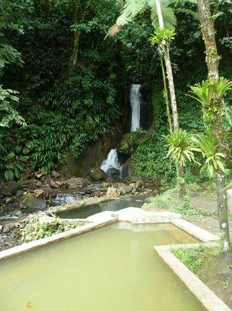 Papillote Tropical Gardens:                   piscines d'eau chaude et d'eau froide en bord de cascade