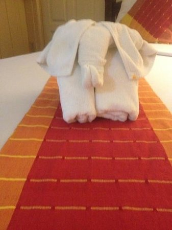 Buddy Lodge Hotel:                   elephant towels