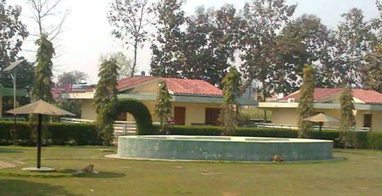 Rahi Pathik Niwas:                   Hut type rooms with big lawn in front