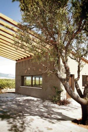 Bodega casa primicia laguardia lo que se debe saber antes de viajar tripadvisor - Bodegas casa primicia ...