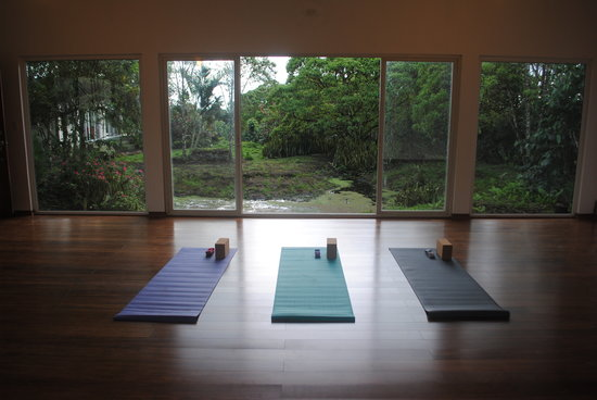 Semilla Verde Boutique Hotel: Namaste! Ready for the 2013 yoga retreats