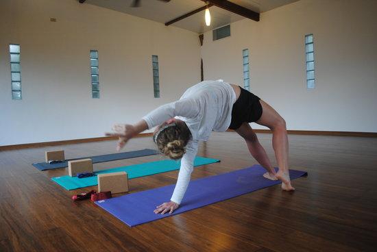 Semilla Verde Boutique Hotel: Yoga practice in Galapagos