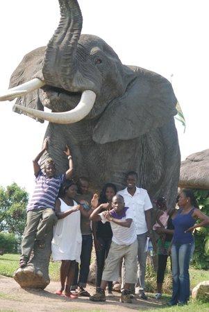 Simba Safari Camp:                                     With someone friendly