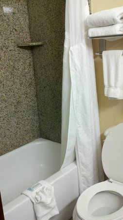 Holiday Inn Express Hotel & Suites Laurel: Bathrom