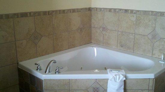 Holiday Inn Express Hotel & Suites Laurel : In Room Whirlpool