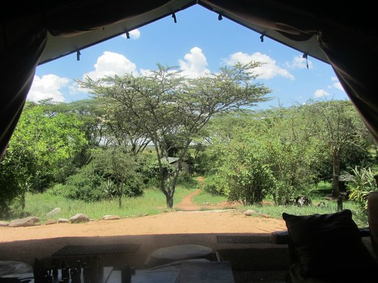 Porini Mara Camp:                   View from the main tent