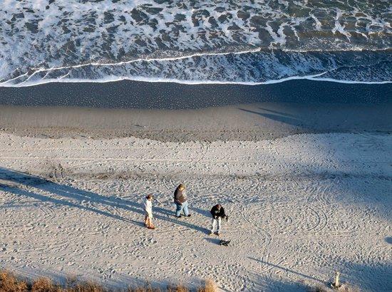 Hampton Inn & Suites Myrtle Beach/Oceanfront:                   Shell Hunters