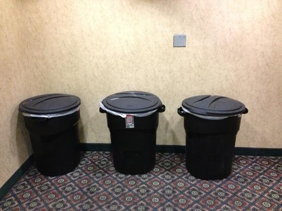 Extended Stay America - Phoenix - Biltmore: The trash cans that greet you as you step off the 3rd floor elevator.