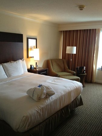Hilton Wilmington Riverside:                   King bed and view of room