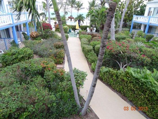 Sibonne Beach Hotel:                                     Sibonne gardens
