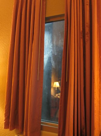 Rodeway Inn of Wesley Chapel:                   What a clean window to look out of...NOT!