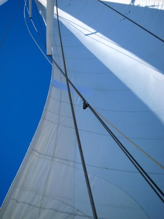 La Boheme Charters:                                     beautiful sail