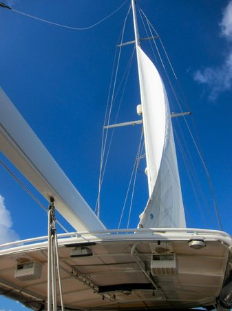 La Boheme Charters:                                     catching wind