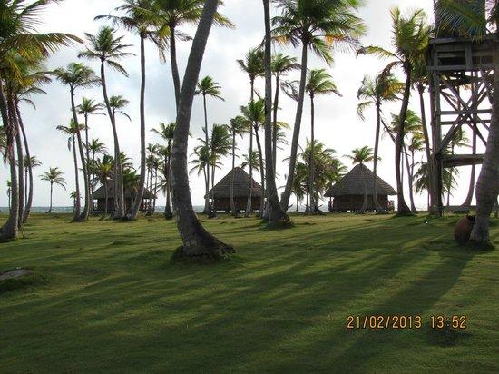 Yandup Island Lodge: mattina presto