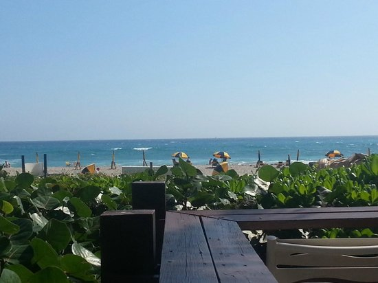 Hilton Singer Island Oceanfront/Palm Beaches Resort:                   View from beachfront dining. Outstanding!
