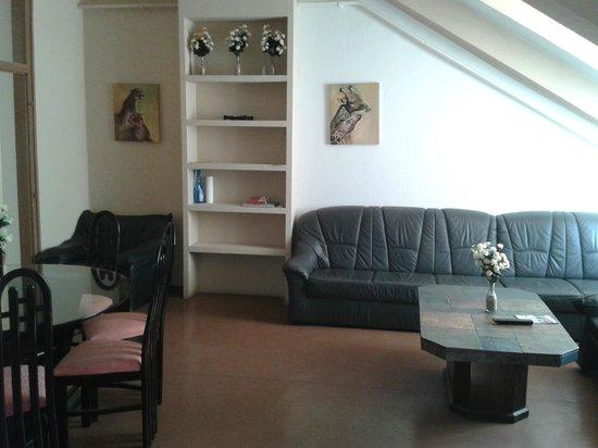 Zrinyi Guesthouse: reception