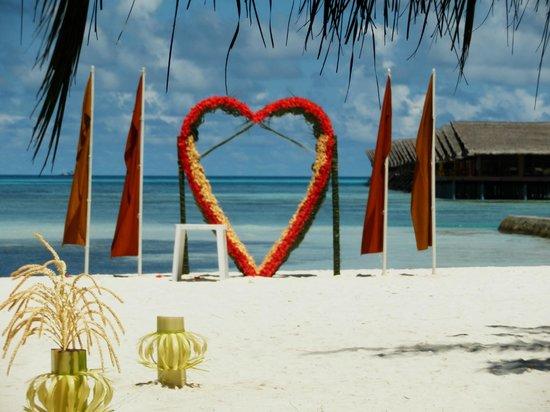 Adaaran Select Hudhuranfushi:                   Beach