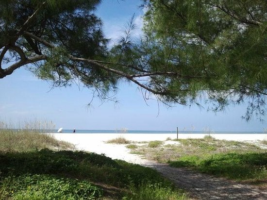 The Molloy Gulf Front Motel and Cottages 사진