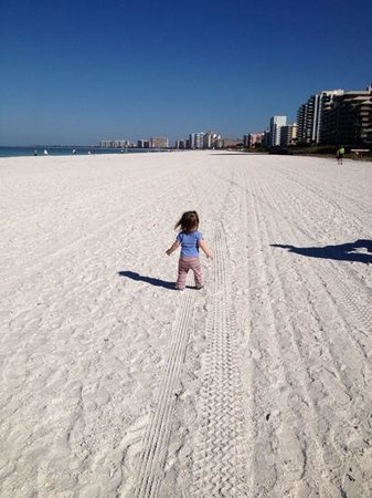 """Marco Island Farmers Market-Wednesday:                   Early morning walk on our beautiful white sandy beach on the """"Island of Paradi"""