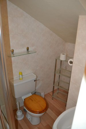 Friars Rest Guest House:                   en-suite bathroom