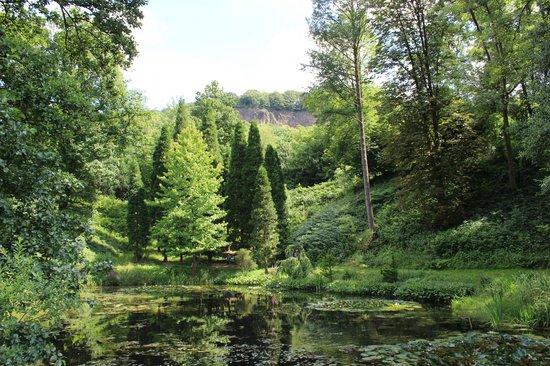 Arboretum Park Haerle