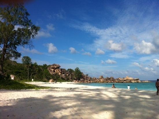 Grand Anse: spiaggia immensa e di sabbia finissima
