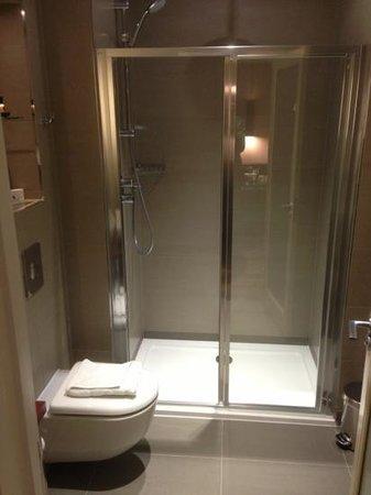 The Belgrave:                   Shower room 110